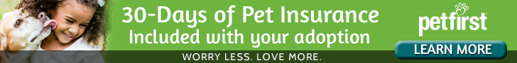 PetFirst Pet Insurance