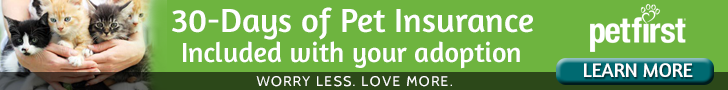30-Days of Pet Insurance included with your Adoption
